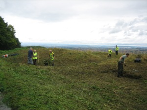 Brash clearing at Birdsall in North Yorkshire