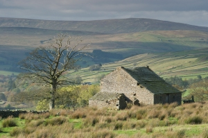 Dereliction of vernacular farm buildings is a major challenge in an area with numerous economic challenges