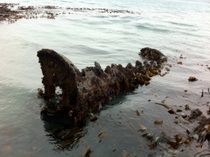 What remains of UB 86 at low spring tide, Pendennis, Falmouth, surrendered along with a number of other U-boats after the First World War. © Mark Milburn.
