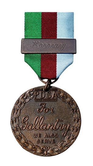 blog-warriors-honorary-pdsa-dickin-medal-c-pdsa