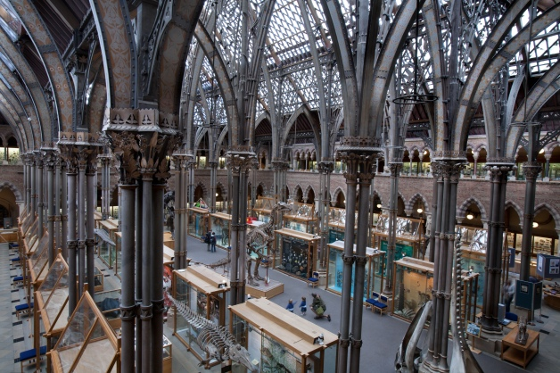 Oxford University Museum of Natural History, Oxford, UK