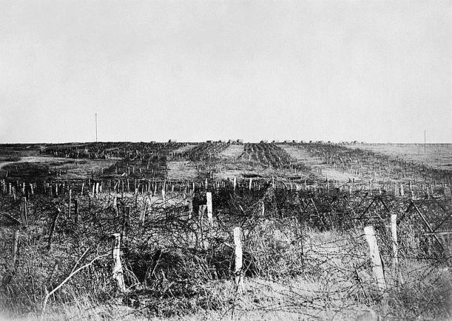 german fortified battlefield IWM CO3392