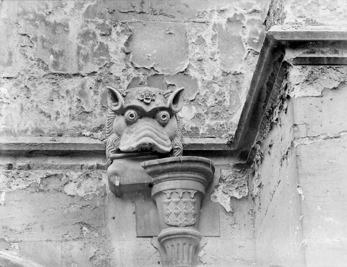 A brief introduction to gargoyles