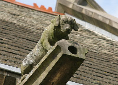 Dog grotesque on church in Skelton cum Newby